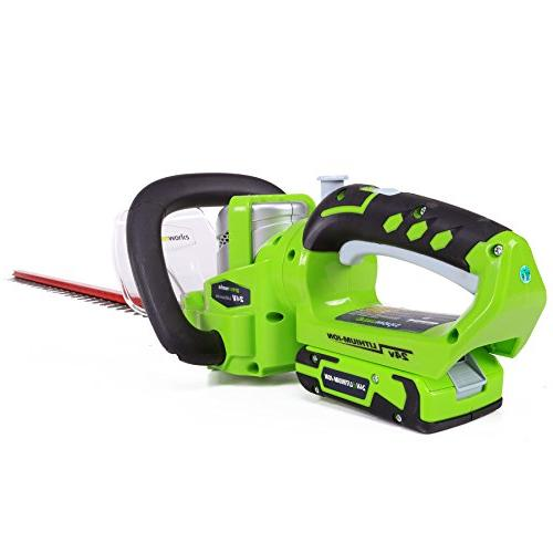 Greenworks G 24 24V Cordless Lithium-Ion in. Dual Action Trimmer